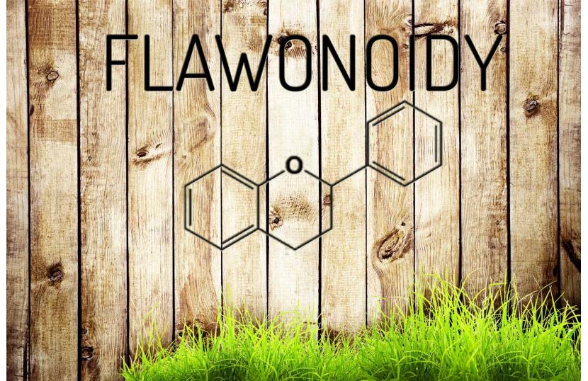 Czym są Flawonoidy