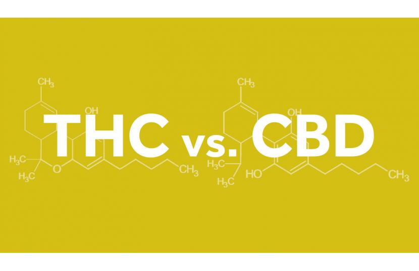 THC kontra CBD